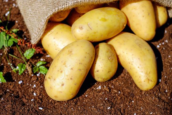 aardappelkroketten uit de airfryer